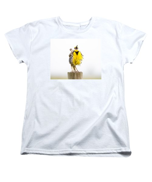 Singing Meadowlark 2 Of 3 Women's T-Shirt (Standard Cut) by Bill Swindaman