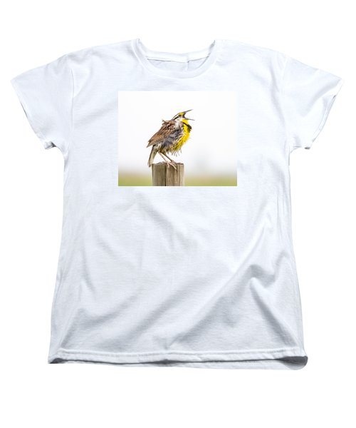 Singing Meadowlark 3rd Of 3 Women's T-Shirt (Standard Cut) by Bill Swindaman
