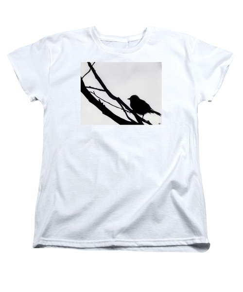 Women's T-Shirt (Standard Cut) featuring the drawing Sparrow In A Gray Sky by D Hackett