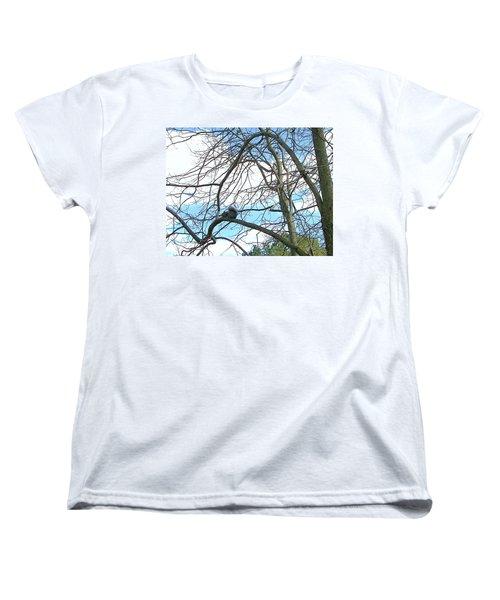 Women's T-Shirt (Standard Cut) featuring the photograph Squirrel Maze by Pamela Hyde Wilson