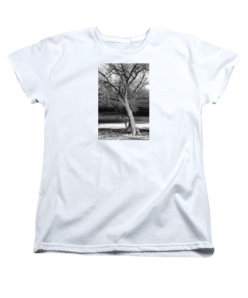 Storm Tree Women's T-Shirt (Standard Cut) by Steven Reed