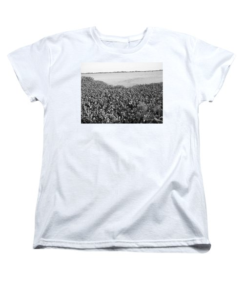 Women's T-Shirt (Standard Cut) featuring the photograph Swamp Hyacinths Water Lillies Black And White by Joseph Baril