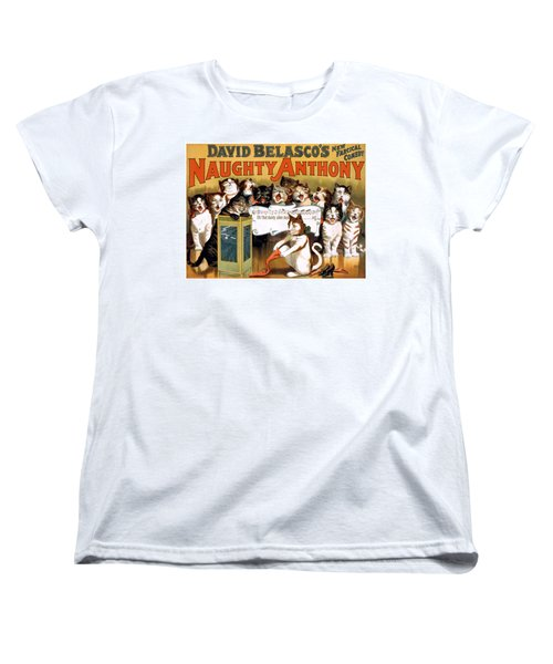 That Dainty Silken Stocking Women's T-Shirt (Standard Cut) by Terry Reynoldson