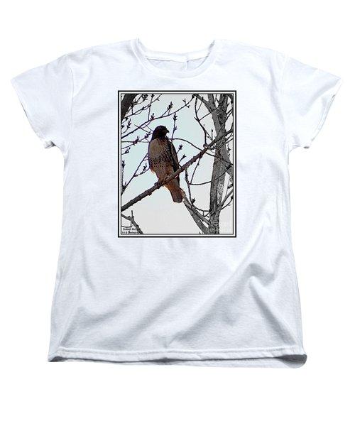The Majestic Hawk Women's T-Shirt (Standard Cut) by Bobbee Rickard
