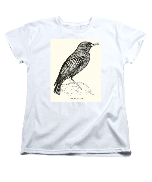 The Starling Women's T-Shirt (Standard Cut) by English School
