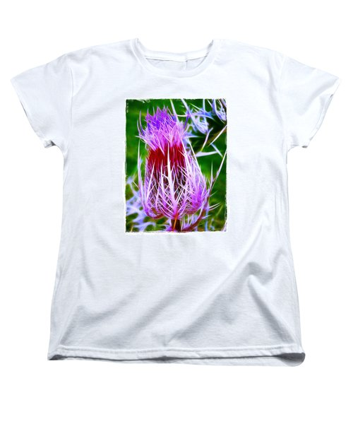 Thistle Women's T-Shirt (Standard Cut) by Judi Bagwell