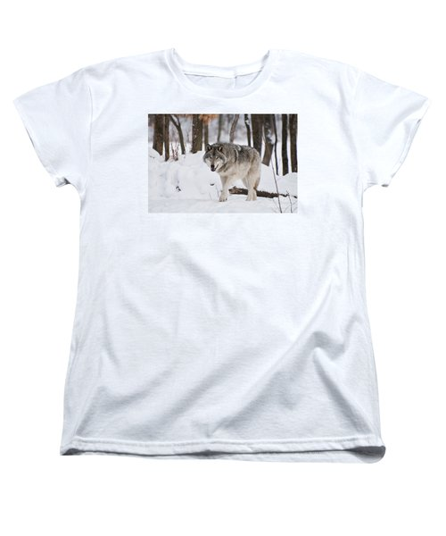 Women's T-Shirt (Standard Cut) featuring the photograph Timber Wolf In Winter Forest by Wolves Only