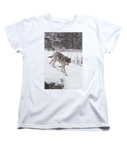 Women's T-Shirt (Standard Cut) featuring the photograph Timber Wolf  by Wolves Only