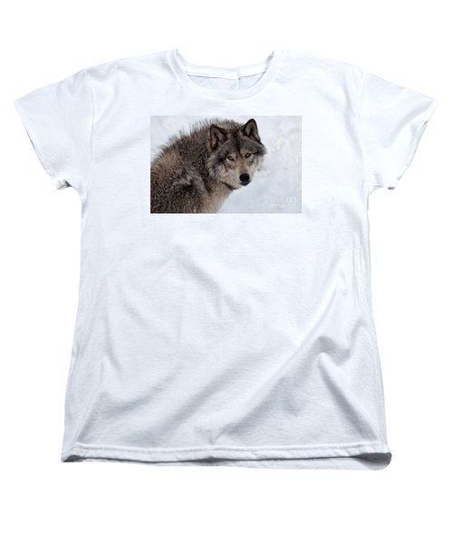 Women's T-Shirt (Standard Cut) featuring the photograph Timberwolf At Rest by Bianca Nadeau