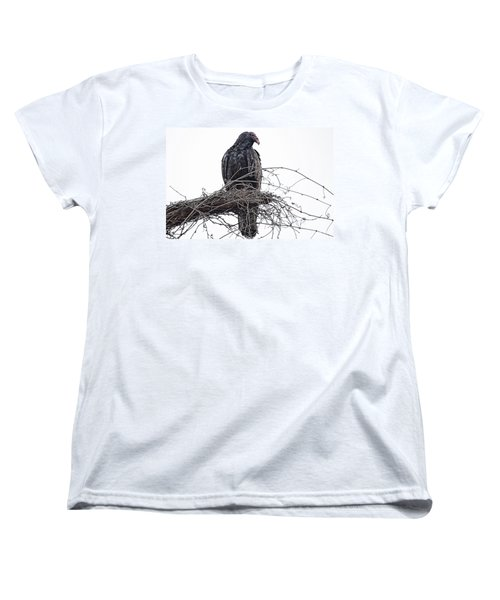 Turkey Vulture Women's T-Shirt (Standard Cut) by Douglas Barnard