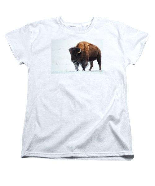 Waiting For Spring Women's T-Shirt (Standard Cut) by Jim Garrison