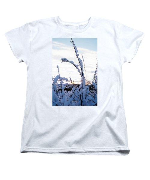 Winter Women's T-Shirt (Standard Cut) by Terry Reynoldson