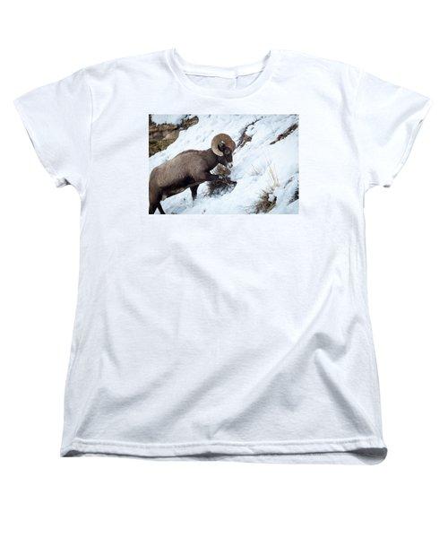 Yellowstone Bighorn Women's T-Shirt (Standard Cut)