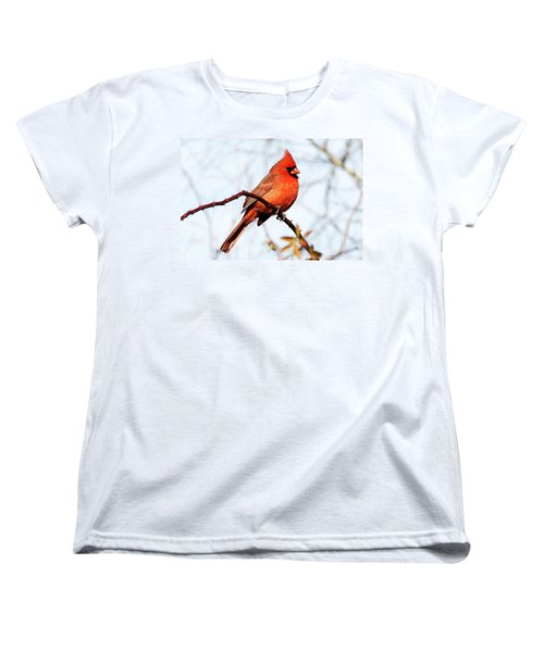 Cardinal 1 Women's T-Shirt (Standard Cut) by Joe Faherty