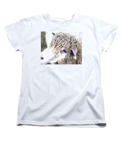 Dolly Dwc Women's T-Shirt (Standard Cut)