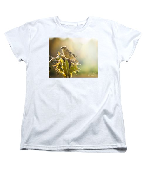 Women's T-Shirt (Standard Cut) featuring the photograph Finch Aglow by Cheryl Baxter