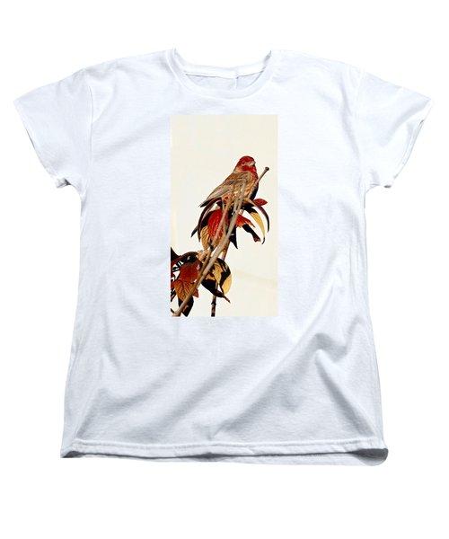 Women's T-Shirt (Standard Cut) featuring the photograph House Finch Perch by Elizabeth Winter