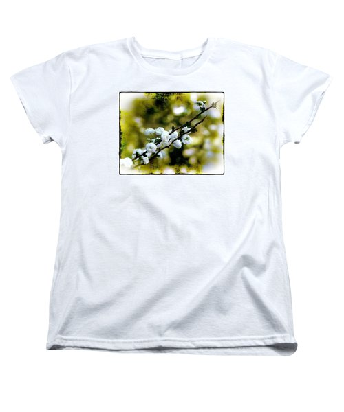 Spring Bough Women's T-Shirt (Standard Cut) by Judi Bagwell