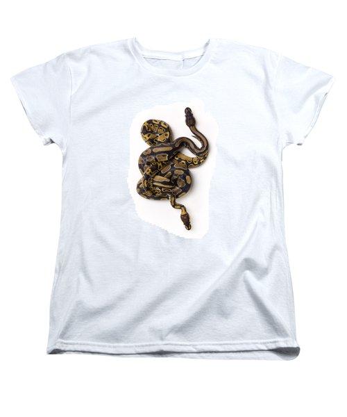 Two Ball Python Snakes Intertwined Women's T-Shirt (Standard Cut) by Corey Hochachka