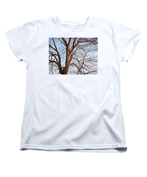 Women's T-Shirt (Standard Cut) featuring the photograph Winter Sunlight On Tree  by Chalet Roome-Rigdon