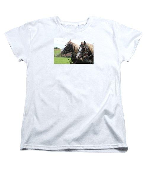 Belgian Horses Women's T-Shirt (Standard Cut) by Yumi Johnson