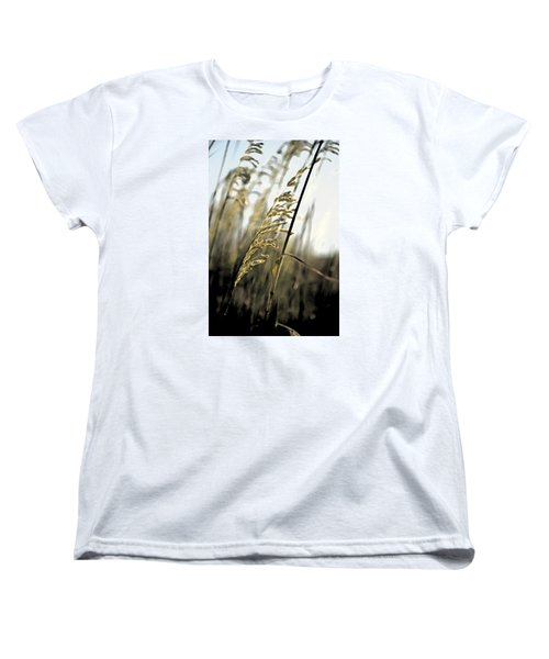 Artistic Grass - Pla377 Women's T-Shirt (Standard Cut) by G L Sarti