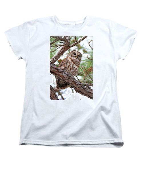 Barred Owl In Pine Tree Women's T-Shirt (Standard Cut)