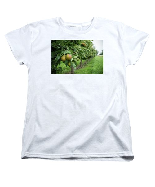 Pear Orchard Women's T-Shirt (Standard Cut) by Hans Engbers