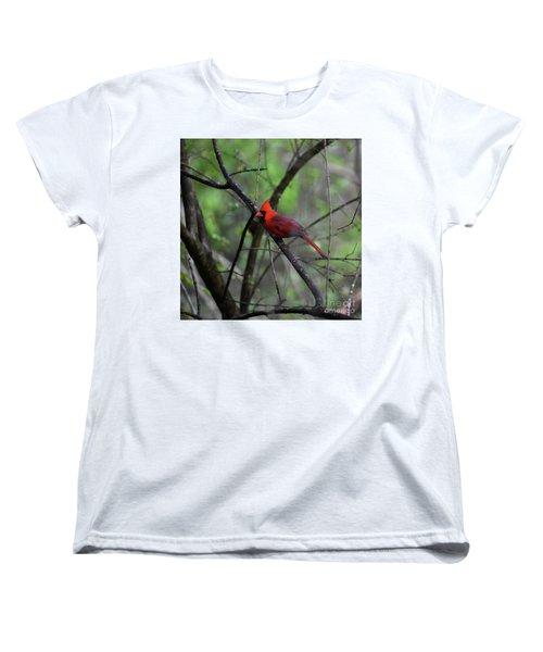 Women's T-Shirt (Standard Cut) featuring the photograph Saint Louis by Skip Willits
