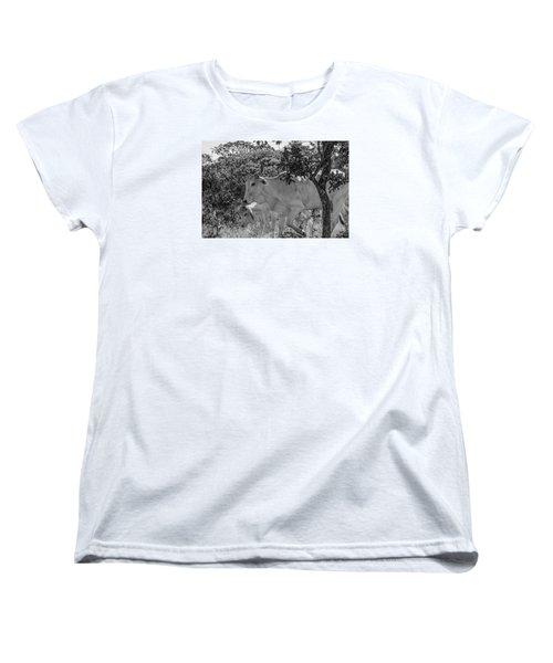 Wildlife Women's T-Shirt (Standard Cut) by Daniel Precht
