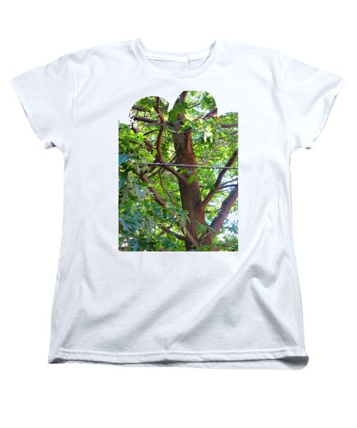Shirts N Pod Gifts Boston N Surrounding Area Nature Photography By Navinjoshi Fineartamerica Pixles Women's T-Shirt (Standard Cut) by Navin Joshi