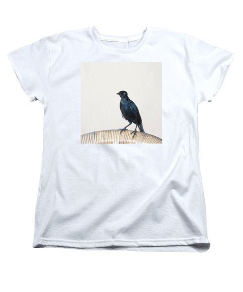 A Carib Grackle (quiscalus Lugubris) On Women's T-Shirt (Standard Cut) by John Edwards