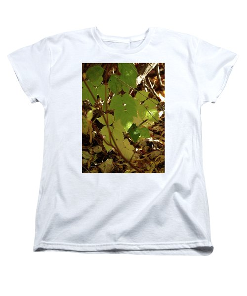 A Plant's Various Colors Of Fall Women's T-Shirt (Standard Cut) by DeeLon Merritt