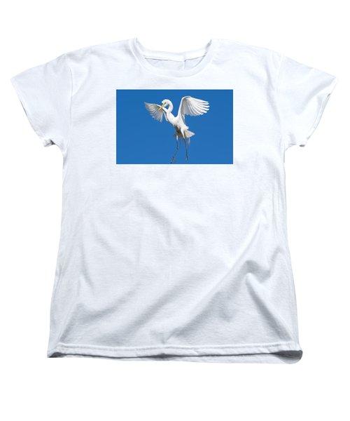 Aerial Ballet Women's T-Shirt (Standard Cut) by Kenneth Albin