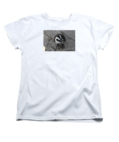 Women's T-Shirt (Standard Cut) featuring the photograph African Penguin by Bev Conover