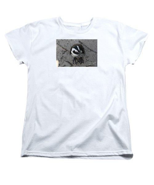 African Penguin Women's T-Shirt (Standard Cut) by Bev Conover