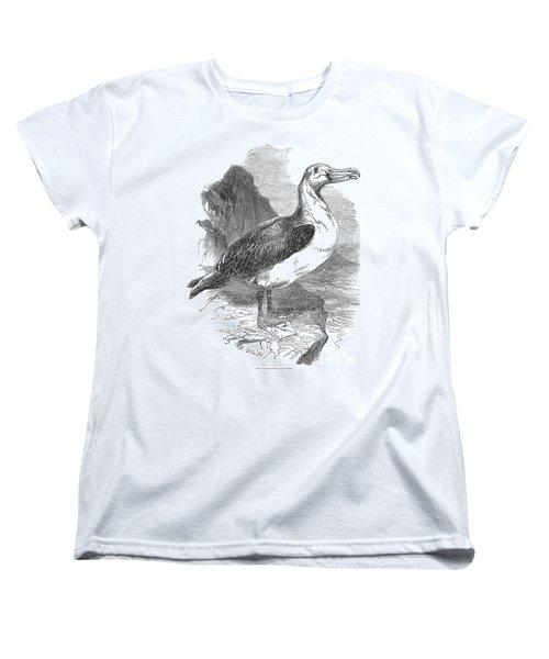 Albatross Women's T-Shirt (Standard Cut) by Granger