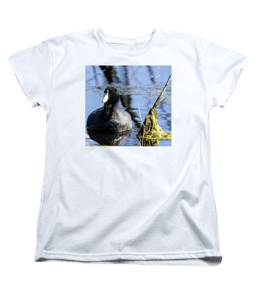 Women's T-Shirt (Standard Cut) featuring the photograph American Coot by Gary Wightman