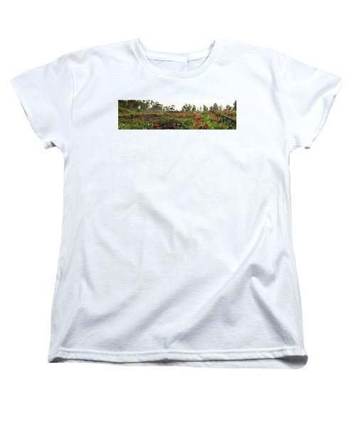 Women's T-Shirt (Standard Cut) featuring the photograph Anemones Forest Panorama by Yoel Koskas