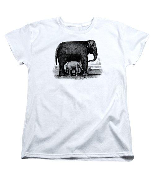 Baby Elephant T-shirt Women's T-Shirt (Standard Cut) by Edward Fielding