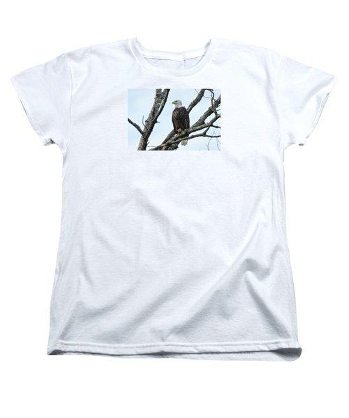 Bald Eagle 5 Women's T-Shirt (Standard Cut) by Steven Clipperton