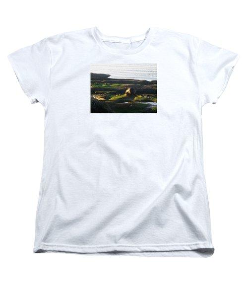 Beachcomber's Gold Women's T-Shirt (Standard Cut) by Anne Havard