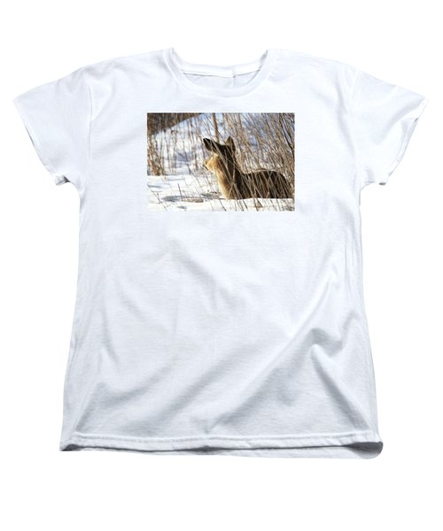 Bedded Fawn 2 Women's T-Shirt (Standard Cut) by Brook Burling
