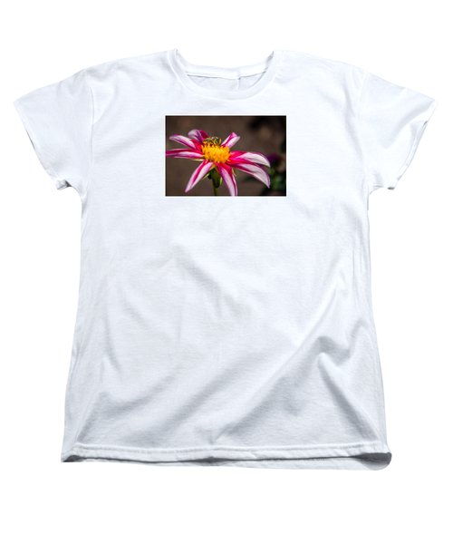 Women's T-Shirt (Standard Cut) featuring the photograph Bee On Dahlia by Randy Bayne