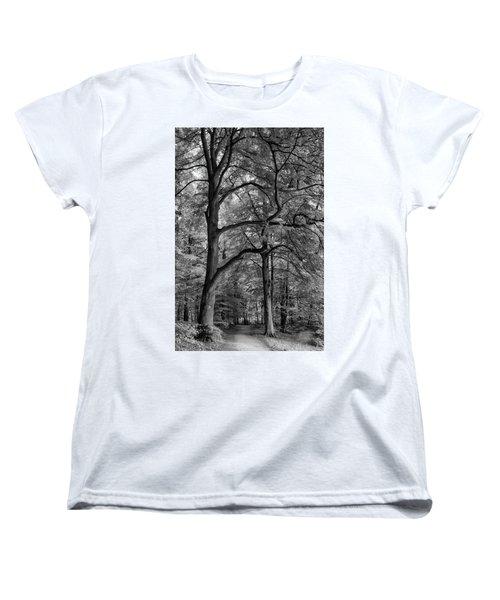 Beech Forest - 365-222 Women's T-Shirt (Standard Cut) by Inge Riis McDonald