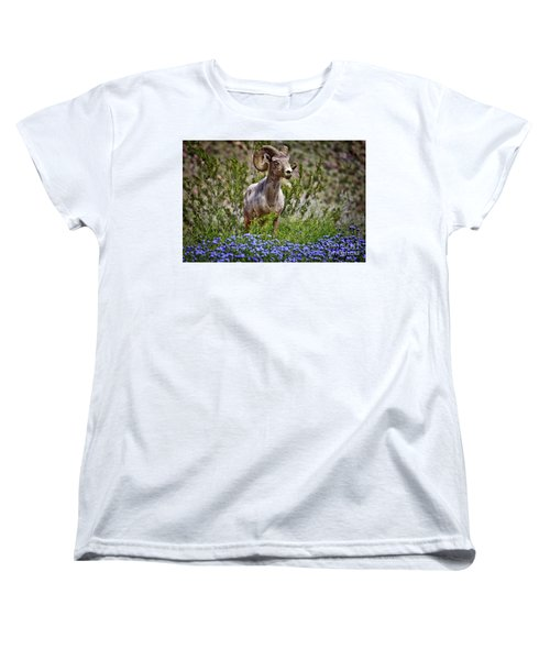 Blooms And Bighorn In Anza Borrego Desert State Park  Women's T-Shirt (Standard Cut) by Sam Antonio Photography