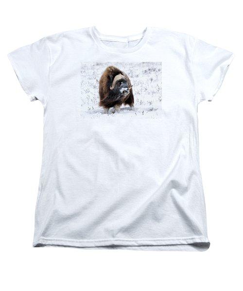 Blowing In The Wind Women's T-Shirt (Standard Cut)