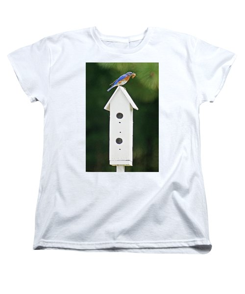 Bluebird Dad Women's T-Shirt (Standard Cut) by Judy Johnson