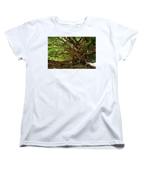 Branches And Roots Women's T-Shirt (Standard Cut)