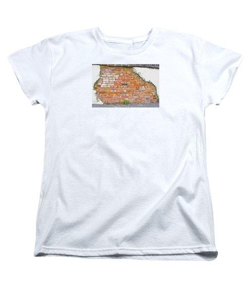 Brick And Mortar Women's T-Shirt (Standard Cut)